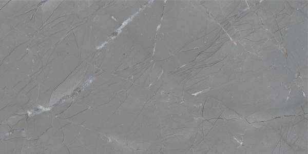 - 600 x 1200 mm (24 x 48 polegadas) - basalto-grey-1